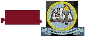 Gaelscoil Pheig Sayers Logo